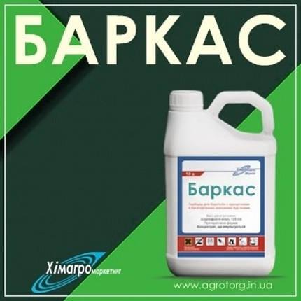 Гербицид Баркас (аналог гербицида Прима), 2- Этилгексиловий ефир 2,4 д, 452,5 г/л + флорасулам 6,25 г/л, фото 2