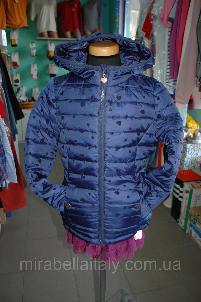 b17871dc Куртка Terranova демисезонная для девочки, цена 850 грн., купить в ...