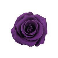 Долгосвежая роза - бутон Фиолетовый аметист