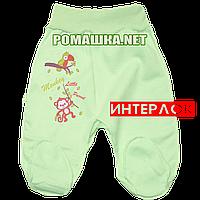 Ползунки (штанишки) на широкой резинке р. 56 демисезонные ткань ИНТЕРЛОК 100% хлопок ТМ Алекс 3165 Зеленый б
