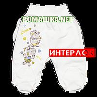 Ползунки (штанишки) на широкой резинке р. 56 демисезонные ткань ИНТЕРЛОК 100% хлопок ТМ Алекс 3165 Бежевый А