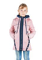 Демисезонная детская куртка Оля пудра+синий (30-38)
