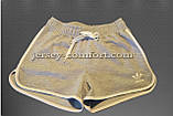 Шорты женские спортивные трикотажные окантовка. Серые. Мод. 234., фото 2