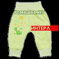 Штанишки на широкой резинке р. 74 демисезонные ткань ИНТЕРЛОК 100% хлопок ТМ Алекс 3297 Зеленый А