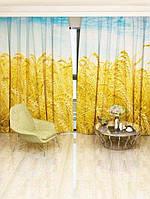 Фотоштора Пшениця на полі (0840_1_1)