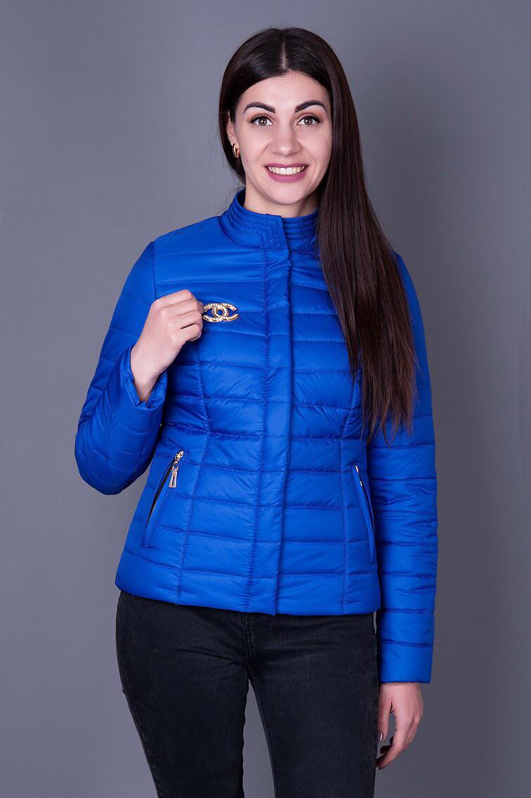 6abc9bf57f41 Женская куртка цвета электрик, воротник стойка, весна - осень - Модная  обновка в Хмельницком