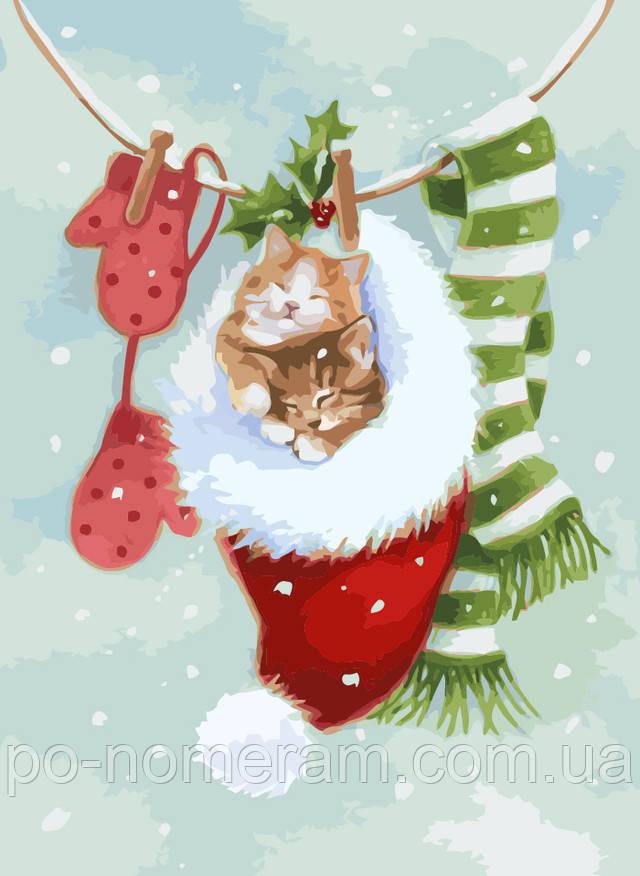 Картина по номерам котенок