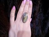 Кільце низький лабрадор в сріблі. Кільце з лабрадором 17 розмір Індія, фото 4