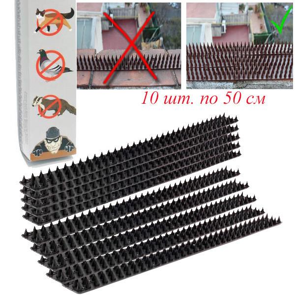 Набор шипов от птиц и животных  10 шт (черные), фото 1