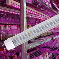Фитолампа для растений T8 Led 60W  G13 1200mm  230V