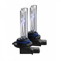 Лампа D-серии Infolight 50W, для линзы. Ксеноновая лампа, используемая в линзах Infolight 50W (4200К/5000К/600