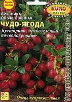 Брусника обыкновенная Чудо-ягода