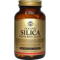 Solgar, Океанічний оксид кремнію з червоних водоростей, 100 капсул вегетаріанських