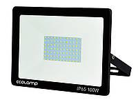 Светодиодный LED прожектор 100Вт 6500К 9000Lm IP65 Ecolamp