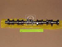 Распредвал Volkswagen T5 2.5TDI BNZ/BPC/BPD/BPE (производство AE) (арт. CAM912), AHHZX