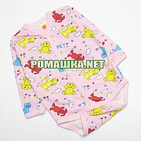 Детский боди с длинным рукавом р. 56 с начесом ткань ФУТЕР (байка) 100% хлопок 4018 Розовый