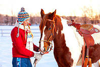 Свободные часы на прокат лошадей в Харькове