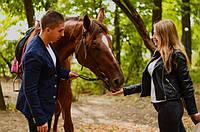Техника безопасности при общении с лошадью