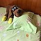 Детский комплект в кроватку Мишки и Пчелки, фото 2