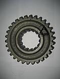 Колесо зубчатое ведущее 3 передачи ЮМЗ 40-1701059  Z=30 Беларусь, фото 3