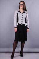 Альфа. Жіноча сукня у діловому стилі великих розмірів. Сірий/чорний