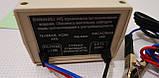 Зарядний пристрій АІДА 10 S (4-180А), десульфатація, фото 5