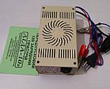 Зарядний пристрій АІДА 10 S (4-180А), десульфатація, фото 6