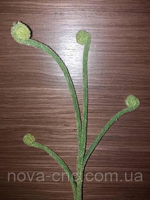 Зеленые бархатные веточки