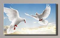 Картина HolstArt Голуби 55*32,5см арт.HAS-375