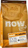 Now Fresh Grain Free Adult Dog Turkey, Duck and Vegetables беззерновой корм для взрослых собак, 11.34 кг