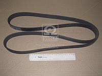 Ремень поликлиновый (производство Contitech) (арт. 8PK2035), ADHZX