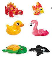 Intex Игрушки 58590 надувные,(касатка, фламинго, рыба, уточка)