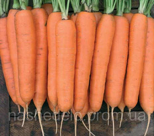 Колтан Ф1 100 000 (1,6-1,8) сем. морковь Нунемс