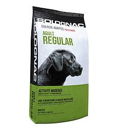Корм для собаки Solognac Adult Regular