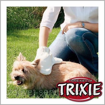 Рукавица массажная Trixie 2335, фото 2