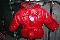 Куртка Losan  демисезонная для девочки