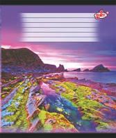 Тетради 24 листа линия картонная обложка красные поля офсет Бриск в ассортименте TB24LIN