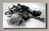 Картина HolstArt Черно-белая роза 55*32,5см арт.HAS-379