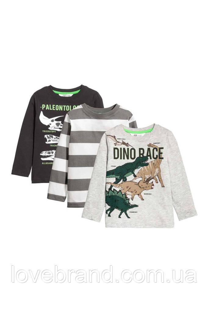 Набор регланов Динозавры H&M для мальчика 4-6 л./110-116 см