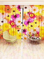 Фотоштора Walldeco Разноцветные ромашки (7762a_4_1)