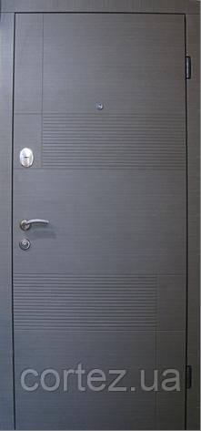 Двери входные стандарт 117