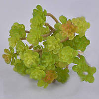 Ветка суккуленты седум большой зеленый зелень искусственная