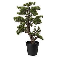 """ИКЕА """"ФЕЙКА"""" Искусственное растение в горшке, бонсай 21см."""