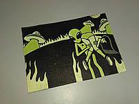 Обложка на паспорт Пришелец