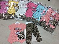Костюм двойка для девочки 2-5 лет футболка+лосины персикового,розового,желтого,голубого цвета кошка оптом