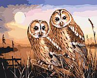 """Картина раскраска по номерам """"Совушки на закате"""" для взрослых и детей"""