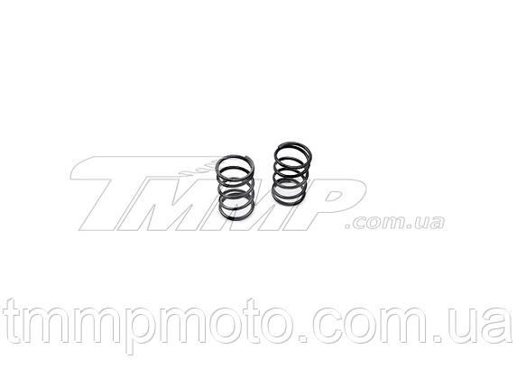 Пружины клапанов 168F (пара) Артикул: P-9615, фото 2