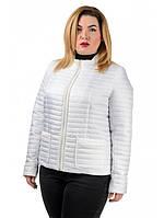 """Женская куртка-пиджак большой размер """"Брук"""", фото 1"""