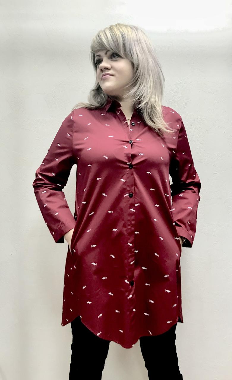 Блуза туника женская РАЗМЕР+, фото 1