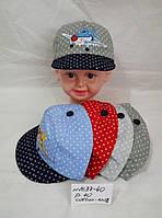 Кепка детская 1637, котон 002\ купить кепку детскую оптом